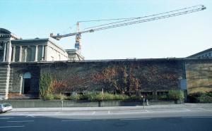 autumn 1981