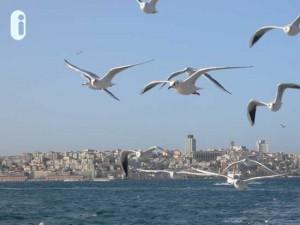 Donau-Bosporus